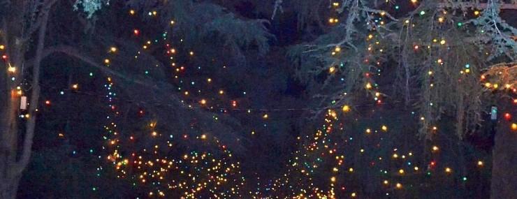 cruising for christmas lights in pasadena